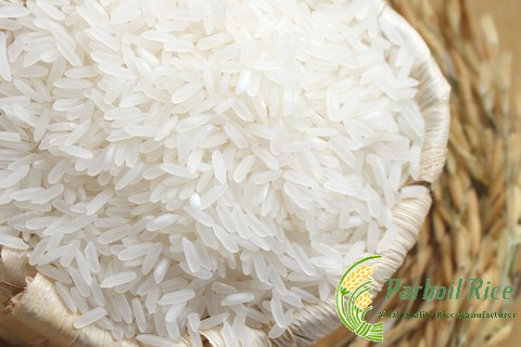 White Rice 10% Broken